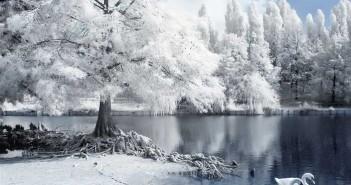 hình ảnh đẹp thiên nhiên của mùa đông