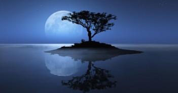 xem cảnh về đêm dưới ánh trăng