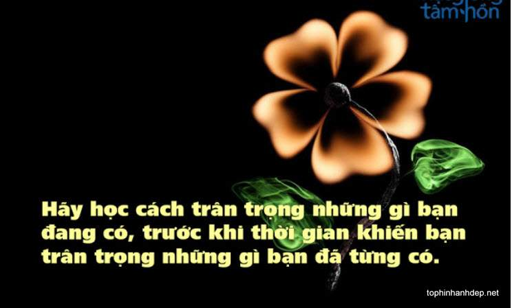 nhung-cau-noi-hay-ve-cuoc-song (2)