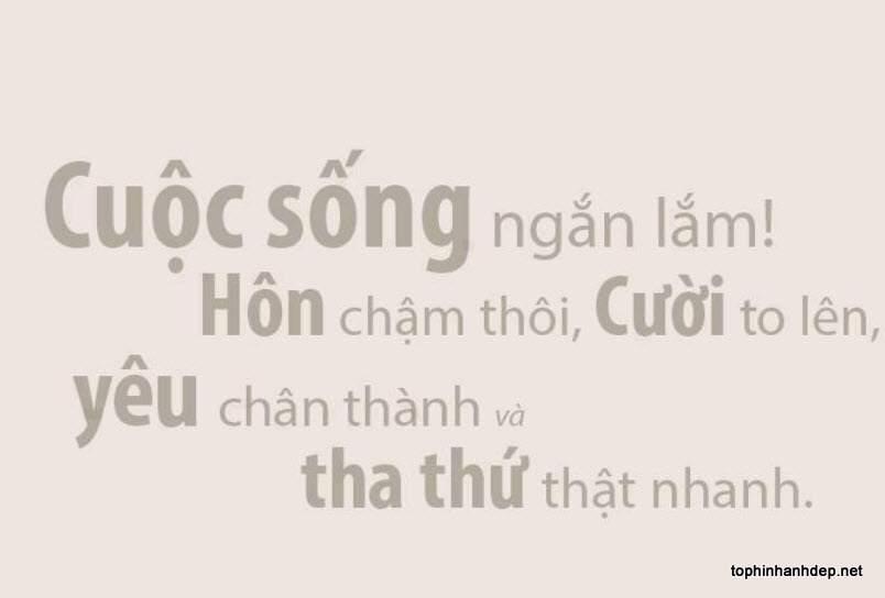 nhung-cau-noi-hay-ve-cuoc-song (6)
