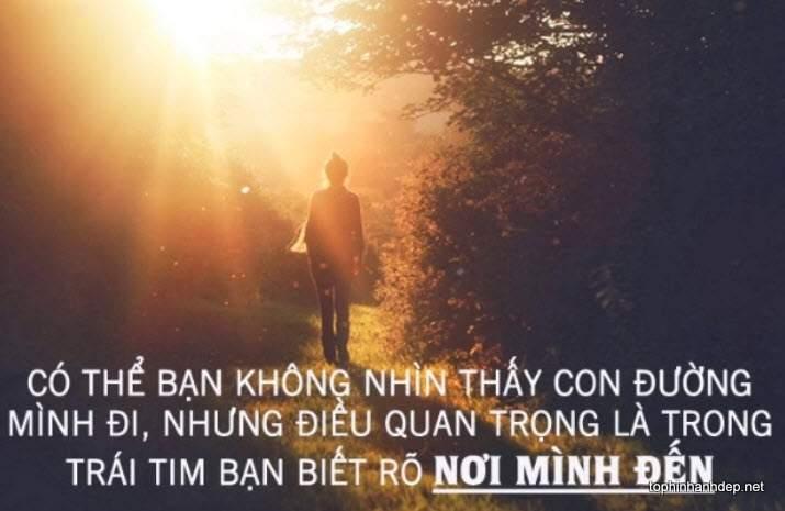 nhung-cau-noi-hay-ve-tinh-yeu-buon (6)