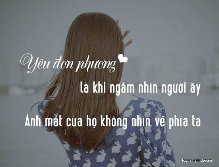nhung-cau-noi-hay-ve-tinh-yeu-don-phuong (7)