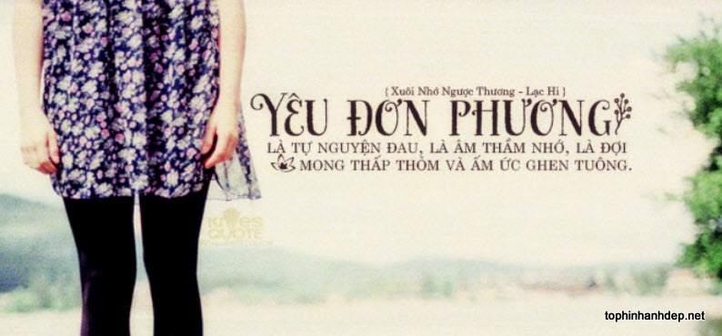 nhung-cau-noi-hay-ve-tinh-yeu-don-phuong (9)